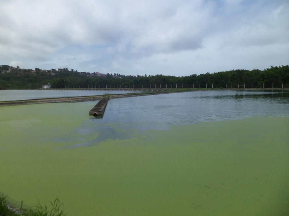 Esgoto de Natal é despejado sem tratamento no rio Potengi; MPRN pede intervenção na Caern