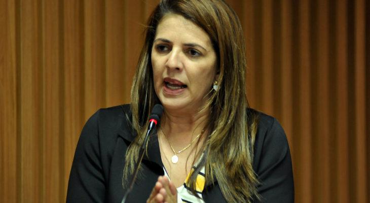 Verª.-Nina-Souza-Foto-ELPÍDIO-JÚNIOR-1-730x400
