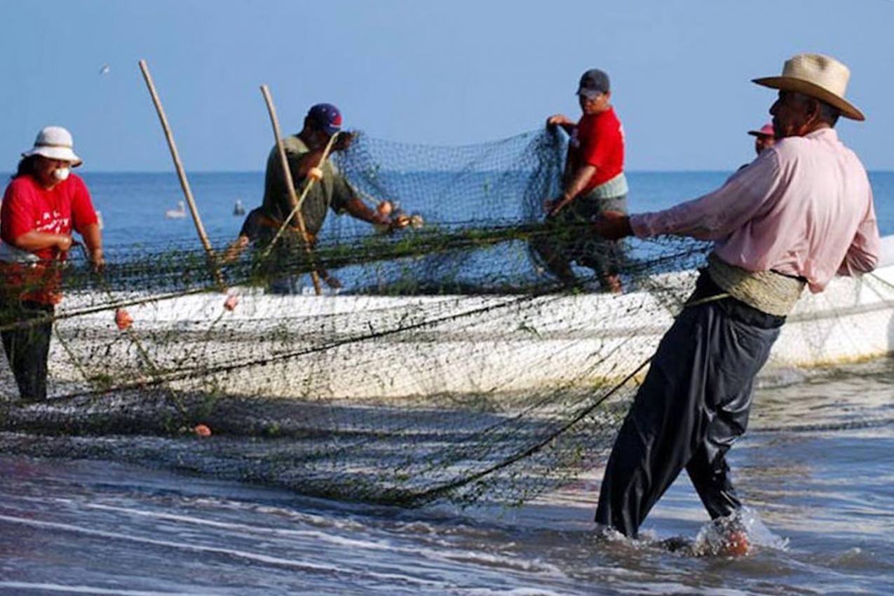 Frente parlamentar em defesa da pesca é criada na Assembleia Legislativa do RN