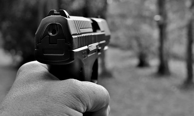 pistol-2948729_640