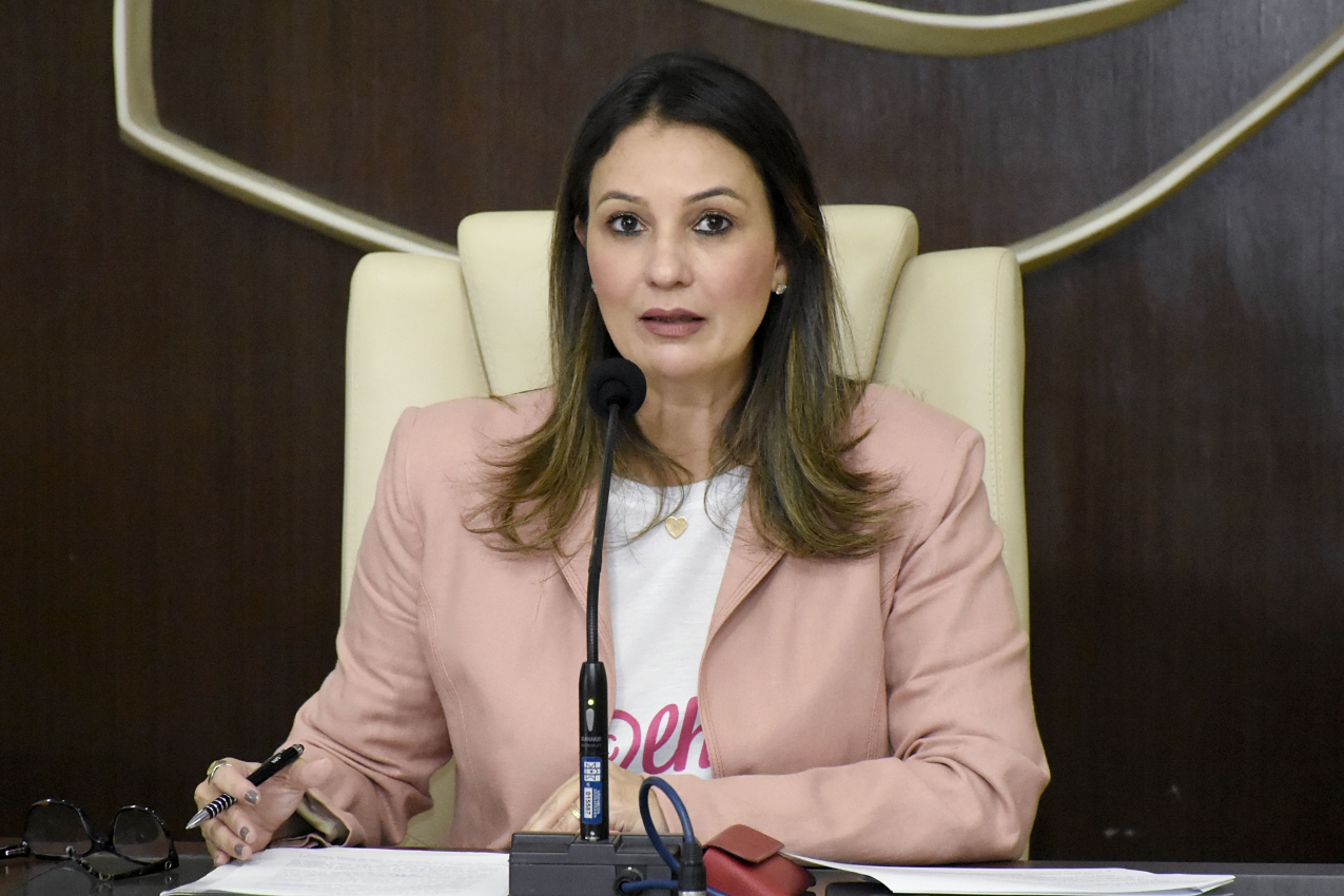 Adoção é tema de Audiência Pública na Assembleia Legislativa do RN